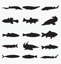 silhouettes fish 1 vector image