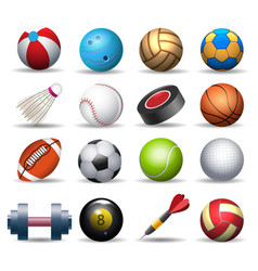 sports equipment pack vector image