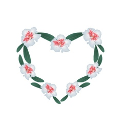White Rhododendron Flowers in A Heart Shape vector