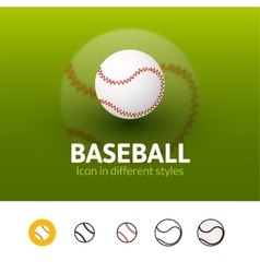 Baseball icon in different style vector image