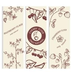 Decorative berry botanical card vector image