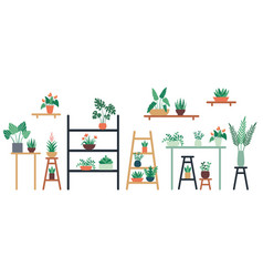 houseplants standing on shelf chair and table in vector image