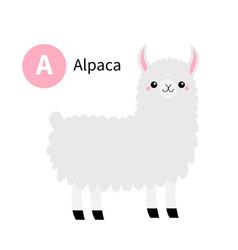 Letter a alpaca llama zoo animal alphabet funny vector