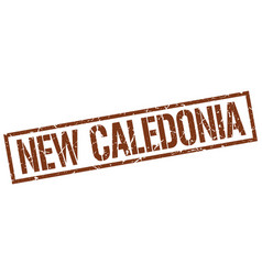 New caledonia brown square stamp vector