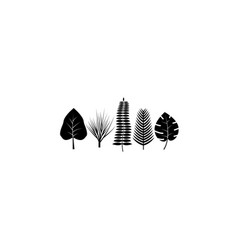 tropical leaves icon black on white background vector image