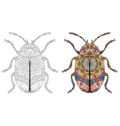 zentangle stylized beetle hand drawn decorative vector image