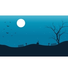 Silhouette of bat halloween and full moon vector image vector image