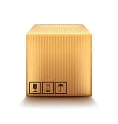 cardboard box isolated on white vector image