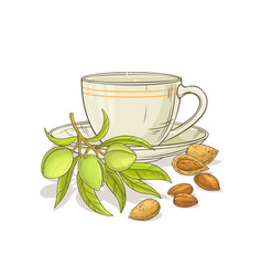almond tea vector image