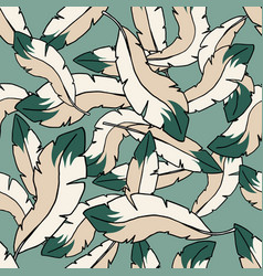 color feathers embroidery seamless pattern hand vector image