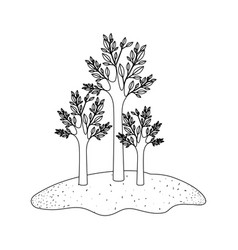 trees set in grassland in monochrome silhouette vector image