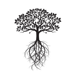White old tree and roots vector