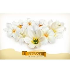 Bouquet white flowers vector