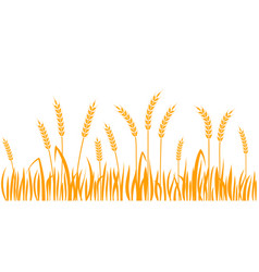 Ears wheat horizontal border seamless pattern vector