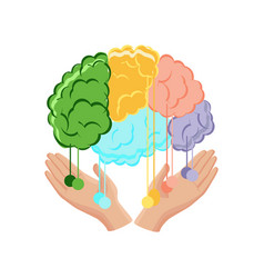 human hands holding a brain with connection lines vector image