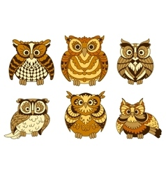 Cute brown cartoon owls birds vector image vector image