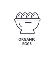 organic eggs line icon outline sign linear vector image vector image