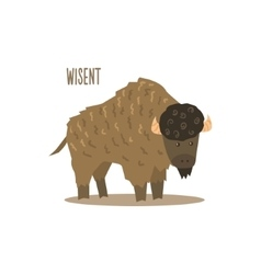 Wisent vector image