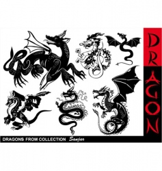 dragons vector image