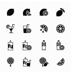 Lemon and lime icons set Lemonade juice vector image