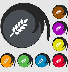 Wheat Ears Icon sign Symbols on eight colored vector image