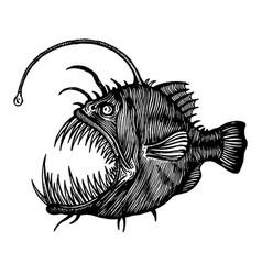 Angler fish lophiiformes vector