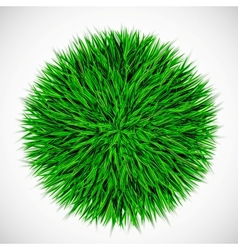 Background with circle of grass vector image