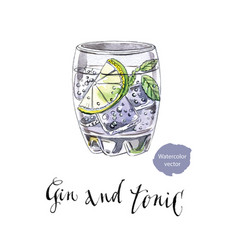 Glass of gin and tonic vector