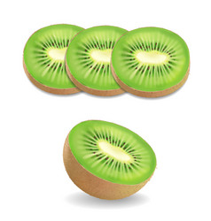 Kiwi fruit realistic on white background vector