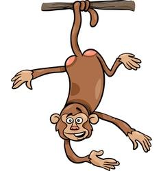 monkey on branch cartoon vector image