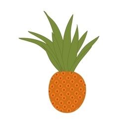Pineapple fruit food vector