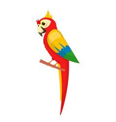 Red parrot sitting on branch isolated on white vector