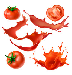 tomatoes berry and juice realistic set vector image