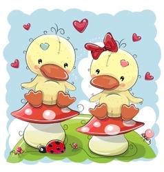 Two Cute Cartoon Ducks vector