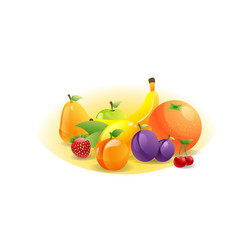 various fresh juicy fruits composition healthy vector image