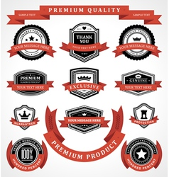 Vintage labels and ribbon retro style set vector