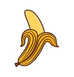 banana fresh fruit icon vector image vector image