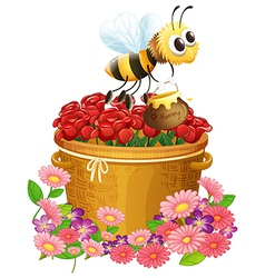 A basket of red roses and a bee with a pot of vector image
