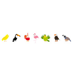 bird set line canary toucan cock rooster parrot vector image