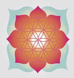 Flower of life design vector