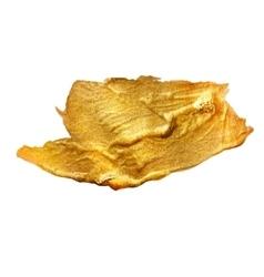 Gold Metal Foil Glitter Brush Stroke Golden vector
