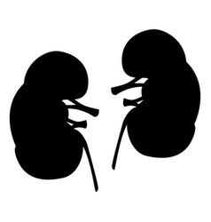 Kidneys black color icon vector