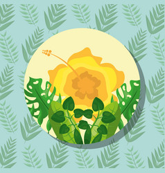 tropical leaves round banner yellow flower vector image