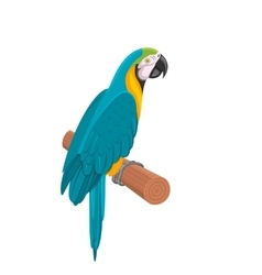 Pretty Blue Parrot Ara on Branch Bird Isolated on vector image