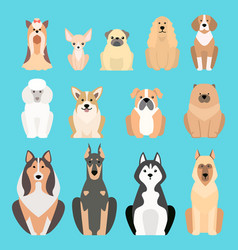 Different dogs breed isolated vector