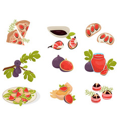 Dishes with fig fruits set pizza sandwich canap vector