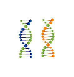 Dna molecule logo vector