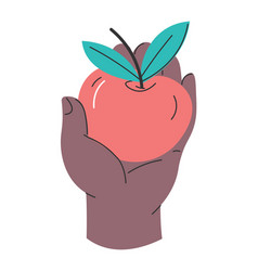 Hand holding ripe apple healthy eating dieting vector