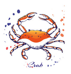 ink hand drawn crab concept for decoration or vector image