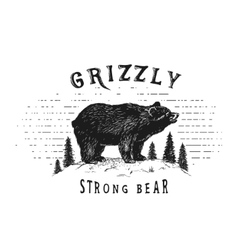 Strong bear in forest vector